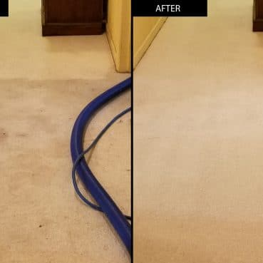 Carpet cleaning before and after results by Sonoma County Carpet Care
