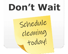 Schedule carpet cleaning service.